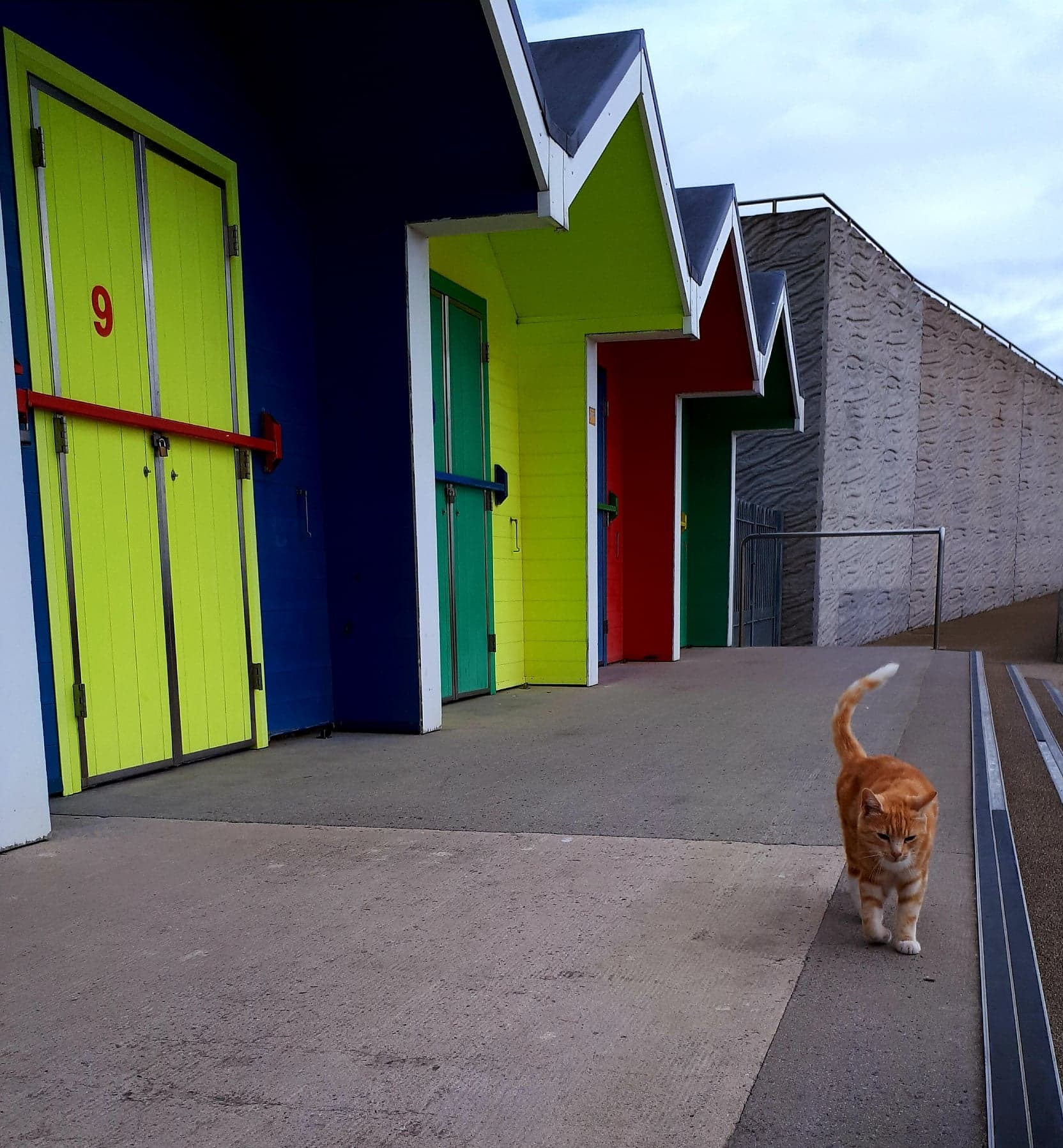 Vale council asks if some Barry Island beach huts should be licensed for wedding ceremonies