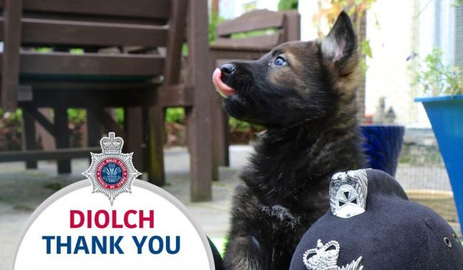 Police thank public following incident