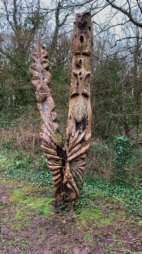 Barry And District News: INTERESTING: An unusual carving in Casehill Woods. Picture: Kathy Edwards