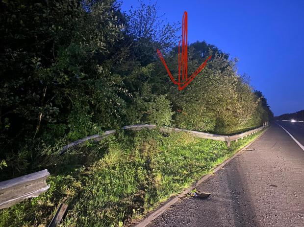 Barry And District News: The car was just about visible behind the tall bushes