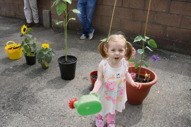 Barry And District News: WOW: Happy Frankie and her new plants (7793196)