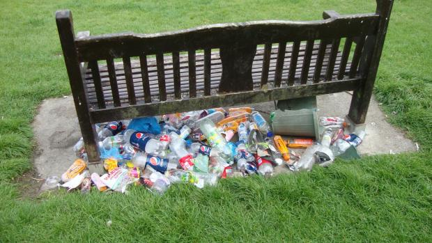 DESECRATED: Litter at Dinxsy's memorial bench (9761719)